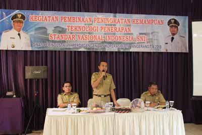 Pembinaan Standar Nasional Indonesia