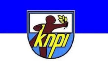 Logo KNPI.(bbs)