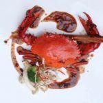 Nikmatnya Ragam Menu Kepiting di Hotel Ara Gading Serpong