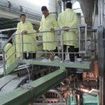 Biaya Bangun PLTN Mini di Tangsel Rp1,7 Triliun