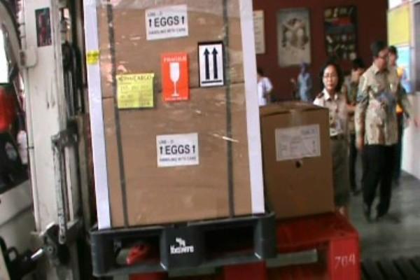 Peti berisi telur siap diekspor ke Myanmar. (don)