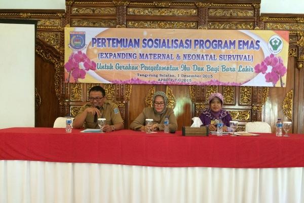 Dinkes Kota Tangsel sosialisasi Program EMAS kepada masyarakat. (one)