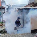 Di Tangsel, Awas Penyakit DBD Makin Mengganas