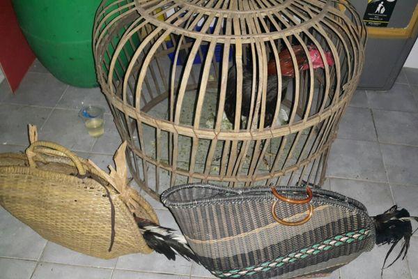 Barang bukti yang diamankan polisi dari arena sabung ayam di Rawa Mekar Jaya. (ist)
