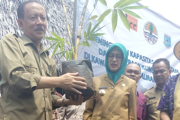 Walikota Tangsel, saat penanaman bambu di ABN Serpong. (one)