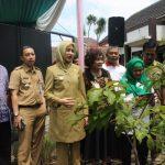 Lomba Toga Nasional, Tangsel Wakili Banten