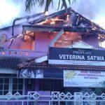 Petshop di Bintaro Ludes Terbakar