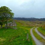 3 Hal yang Harus Diperhatikan Sebelum Investasi Tanah