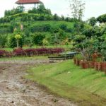 Presiden Lirik Pembuangan Sampah Rawa Kucing Tangerang