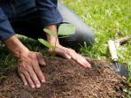 The young man is planting the tree to preserve environment